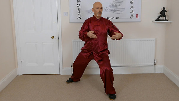 Free Qigong and Silk Reeling Energy Video