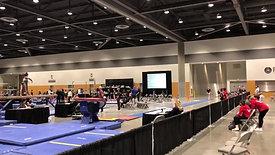 2021 State Championships - Vault