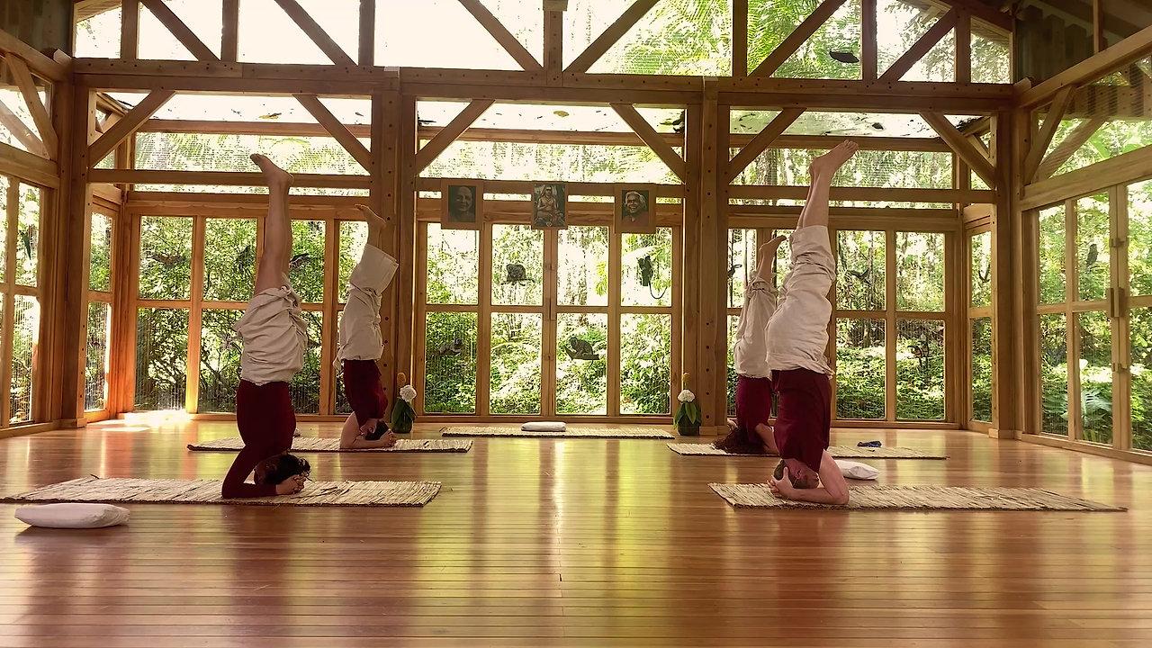 Profesorado Avanzado de Yoga y Sadhana Profunda