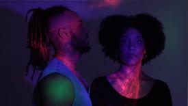 FLN - NO (Alternate Music VIdeo)