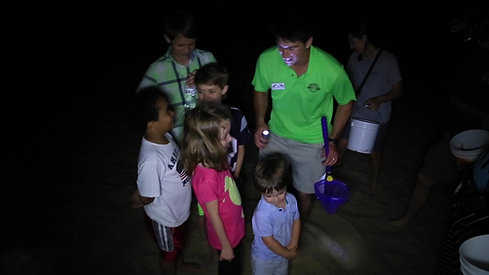 Experience Ghost Crab Quest