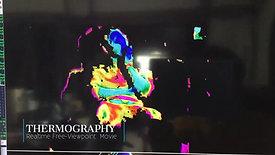 02_thermography_Tengun-label