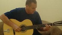 Brad Goodman Mississippi Blues-2 Stella 12 string repro guitar
