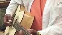 Goodman Dying Crapshooter 12 string guitar