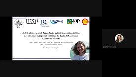 Distribuição espacial da produção primária quimiossintética nos sistemas pelágicos bentônicos da Bacia de Santos no Atlântico Sudeste