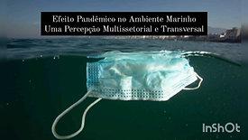 Efeito Pandêmico no Ambiente Marinho: Uma percepção Multissetorial e Transversal