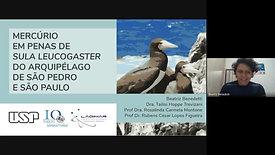 Mercúrio em penas de Sula Leucogaster do Arquipélago de São Pedro e São Paulo
