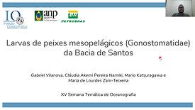 Larvas de peixes mesopelágicos (Gonostomatidae) da Bacia de Santos