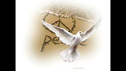 Meditación liberación, paz, magia y relax