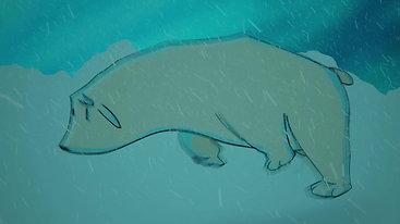 Polar bear run cycle