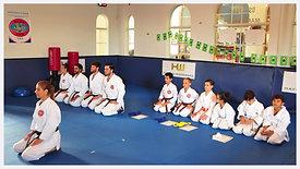 Examen De Kyu WSKF USA