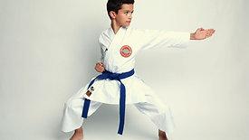 El Karate Infantil