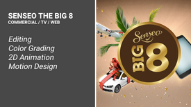 SENSEO THE BIG 8