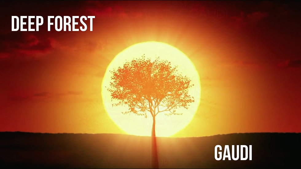 DEEP FOREST GAUDI LIVE 2018
