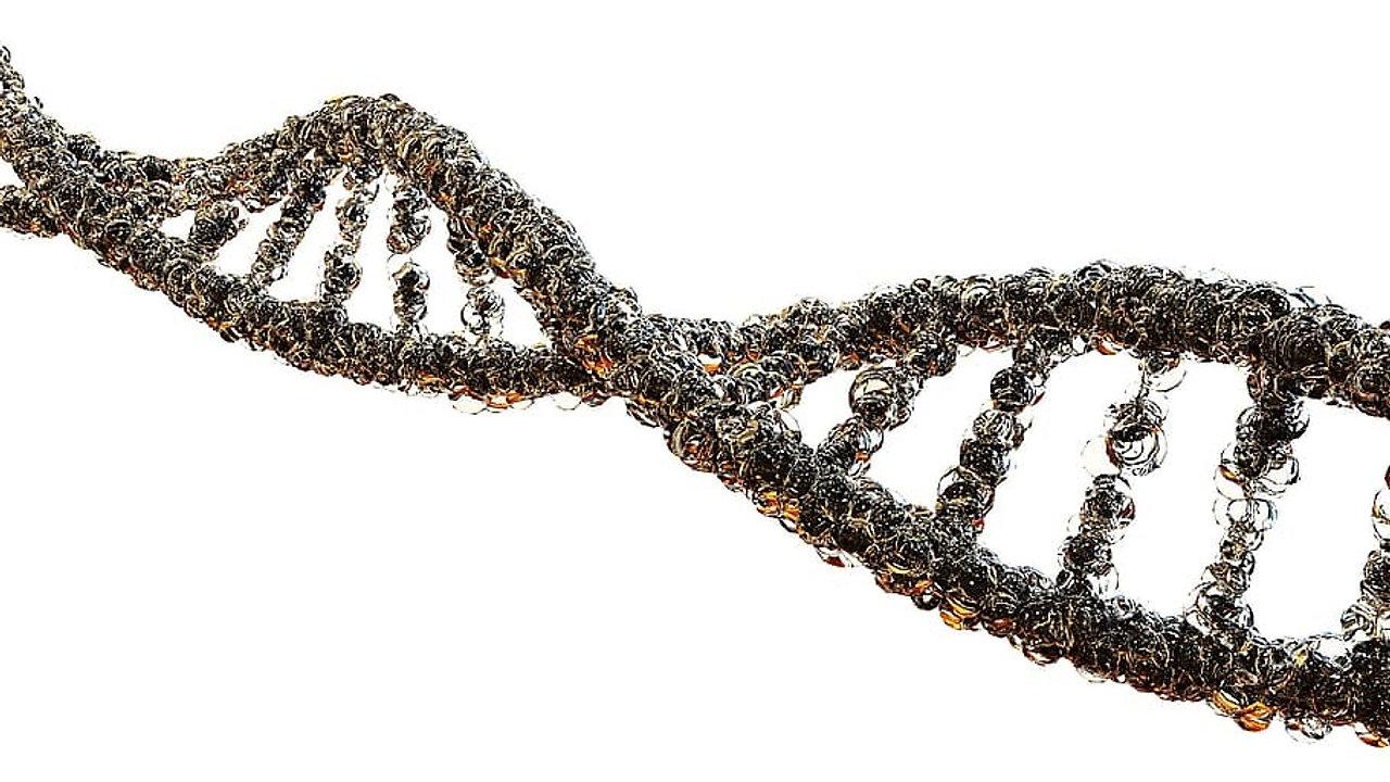 Papel do microbiologista na produção de produtos biotecnológicos