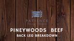 Pineywoods Back Leg Breakdown