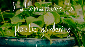 5 Alternatives to Plastic Containers