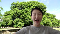 Ya-Ya @home: Banyan Tree by Cloris Laoshi