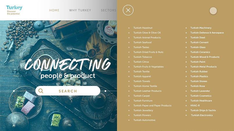 Turkey Discover the Potential Website Design