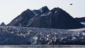 Voice of the Glaciers trailer
