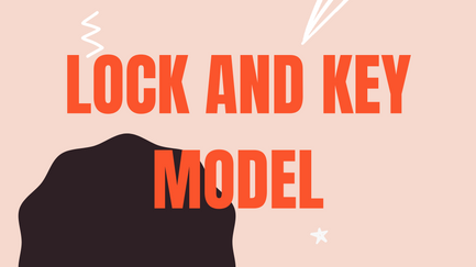 The lock and key model