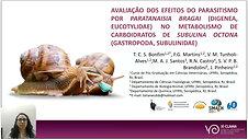 AVALIAÇÃO DOS EFEITOS DO PARASITISMO POR PARATANAISIA BRAGAI (DIGENEA, EUCOTYLIDAE) NO METABOLISMO DE CARBOIDRATOS DE SUBULINA OCTONA (GASTROPODA, SUBULINIDAE)