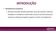 ANÁLISE DAS ALTERAÇÕES NO METABOLISMO OXIDATIVO DE POMACEA MACULATA (MOLLUSCA) INFECTADA COM ANGIOSTRONGYLUS CANTONENSIS (NEMATODA)