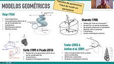 PROPUESTA DE MODELO TEÓRICO PARA EL ESTUDIO DE CONCHAS DE MOLUSCOS