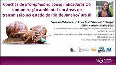 CONCHAS DE BIOMPHALARIA COMO INDICADORAS DA CONTAMINAÇÃO AMBIENTAL EM ÁREAS DE TRANSMISSÃO NO ESTADO DO RIO DE JANEIRO/BRASIL