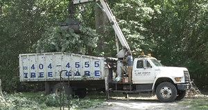 Trudeau Tree Service | East Texas