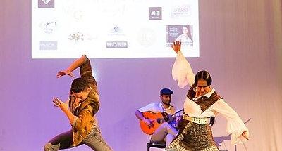 Flamenco The Dance