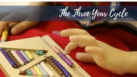 The Three Year Cycle