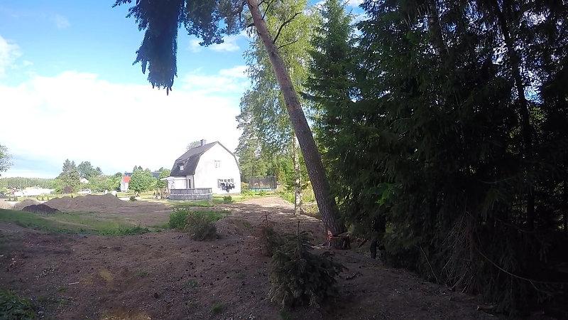 Viking Arbor AB