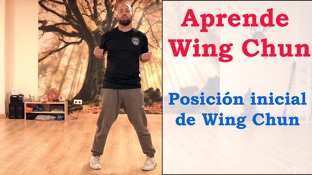 Aprende Wing Chun Online