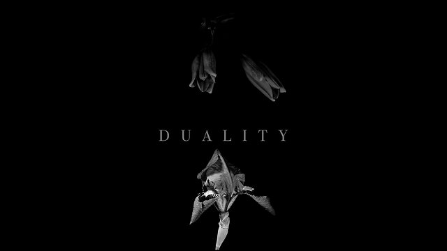 DUALITY   All Chapters