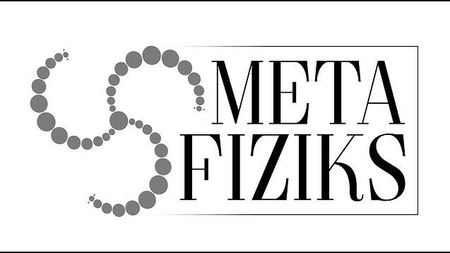 Meta Fiziks