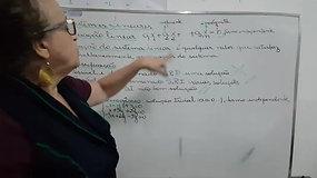 2º EM A e B - Matemática - Sistema Linear - Introdução