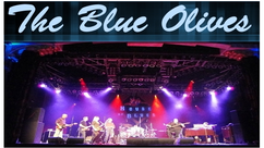 Madison's Blue Olives Band...