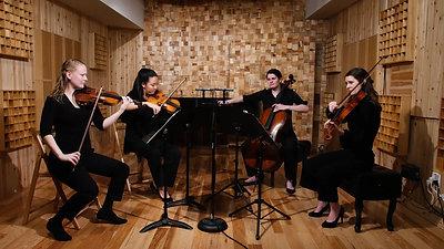 Haydn String Quartet Op. 20 No. 2 - I. Moderato