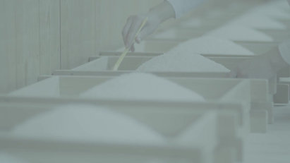 白鶴「白」篇60秒