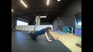 Plank to One Arm Row