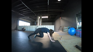 Controlled Plank