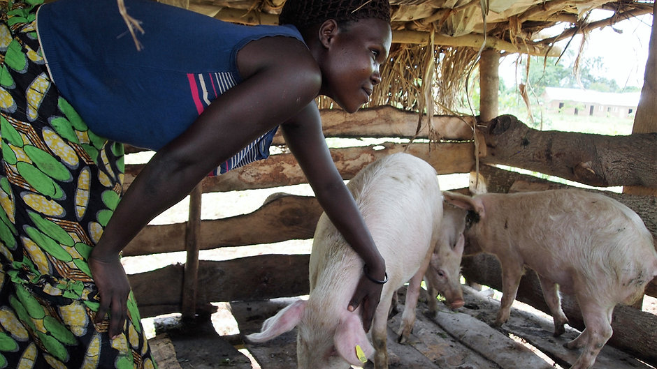 A glimpse of Z-Uganda