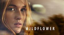 Wildflower Trailer