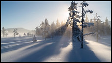Vikerfjell Seasons
