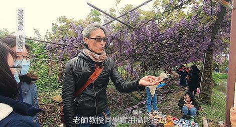 紫藤園記 淡水假日好去處,探索紫色浪漫