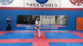 Taegeuk 6