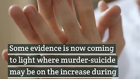 Domestic_Violence_and_Mental_Health_Duri