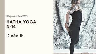 Hatha Yoga N°14