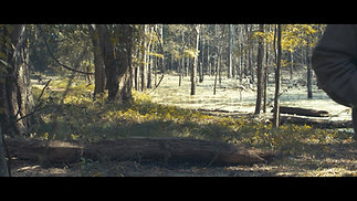 Holt Collier Documentary Film